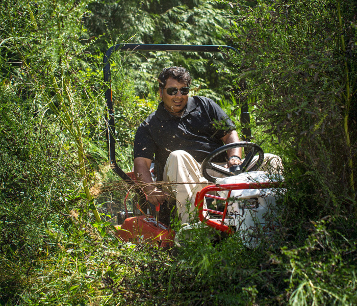 How To Mow Underneath Trees Mow Brush And Tall Grass