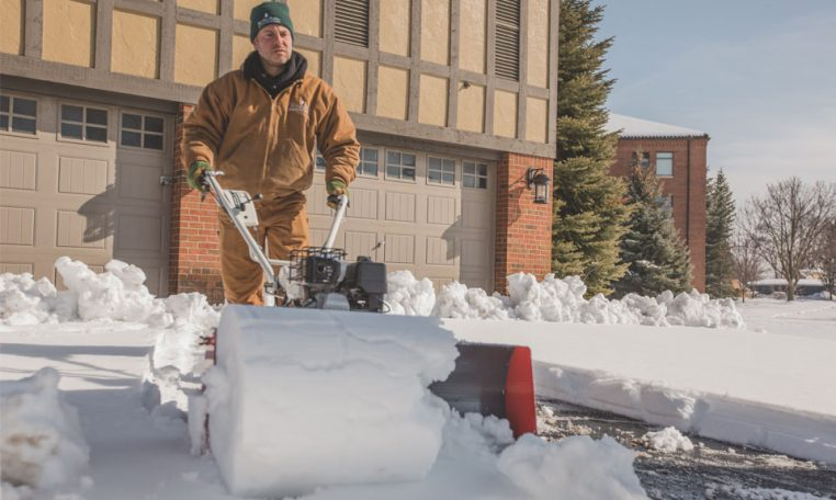 Snow Bull Rolling Snow Logs